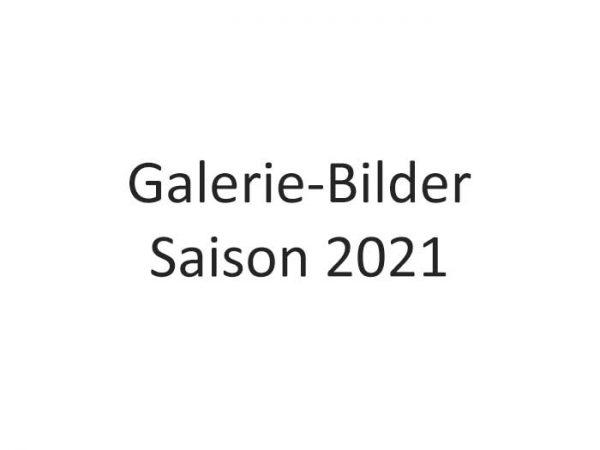 Galerie Bilder